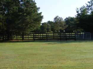 middle pasture