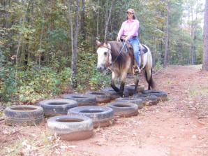 winston tires